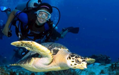 Cozumel Tours - Cozumel Scuba Diving