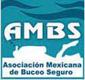 Logo AMBS